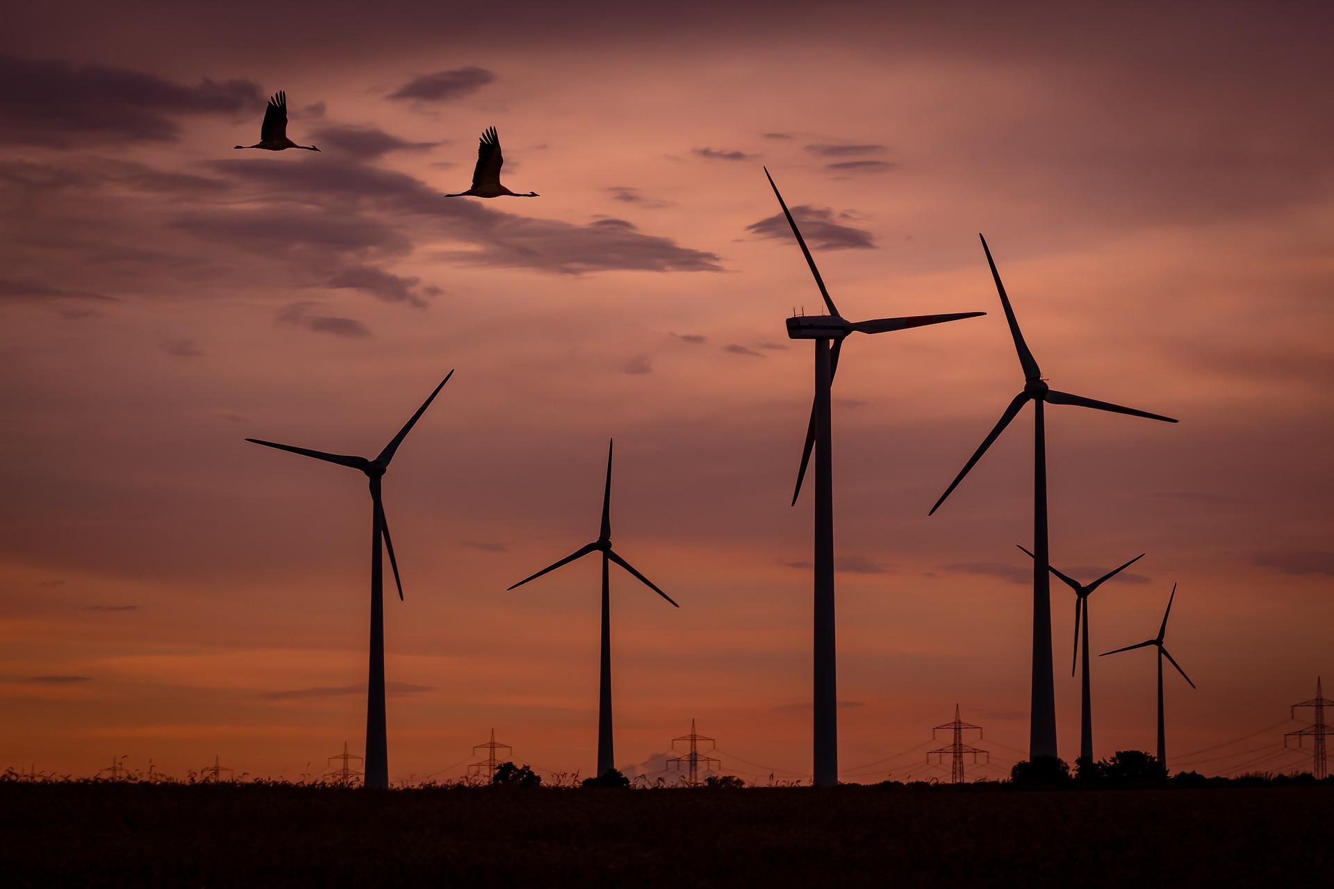 Windkraftanlagen beim Sonnenuntergang